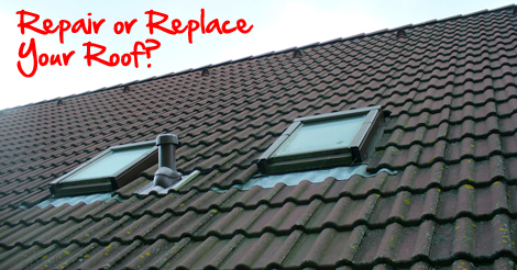 Repair or replace your windows