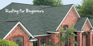 Roofing for beginners