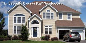 The Essential Guide to Roof Maintenance